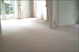 Carpet Cleaning After Residential