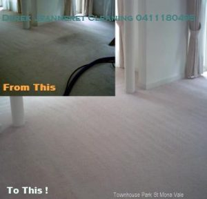 Carpet and Upholstery Cleaning Northern Beaches